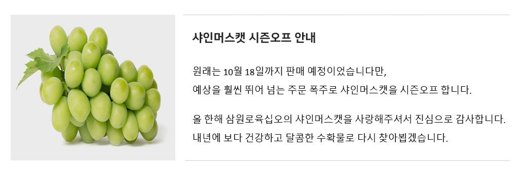 샤인머스캣 시즌오프.png