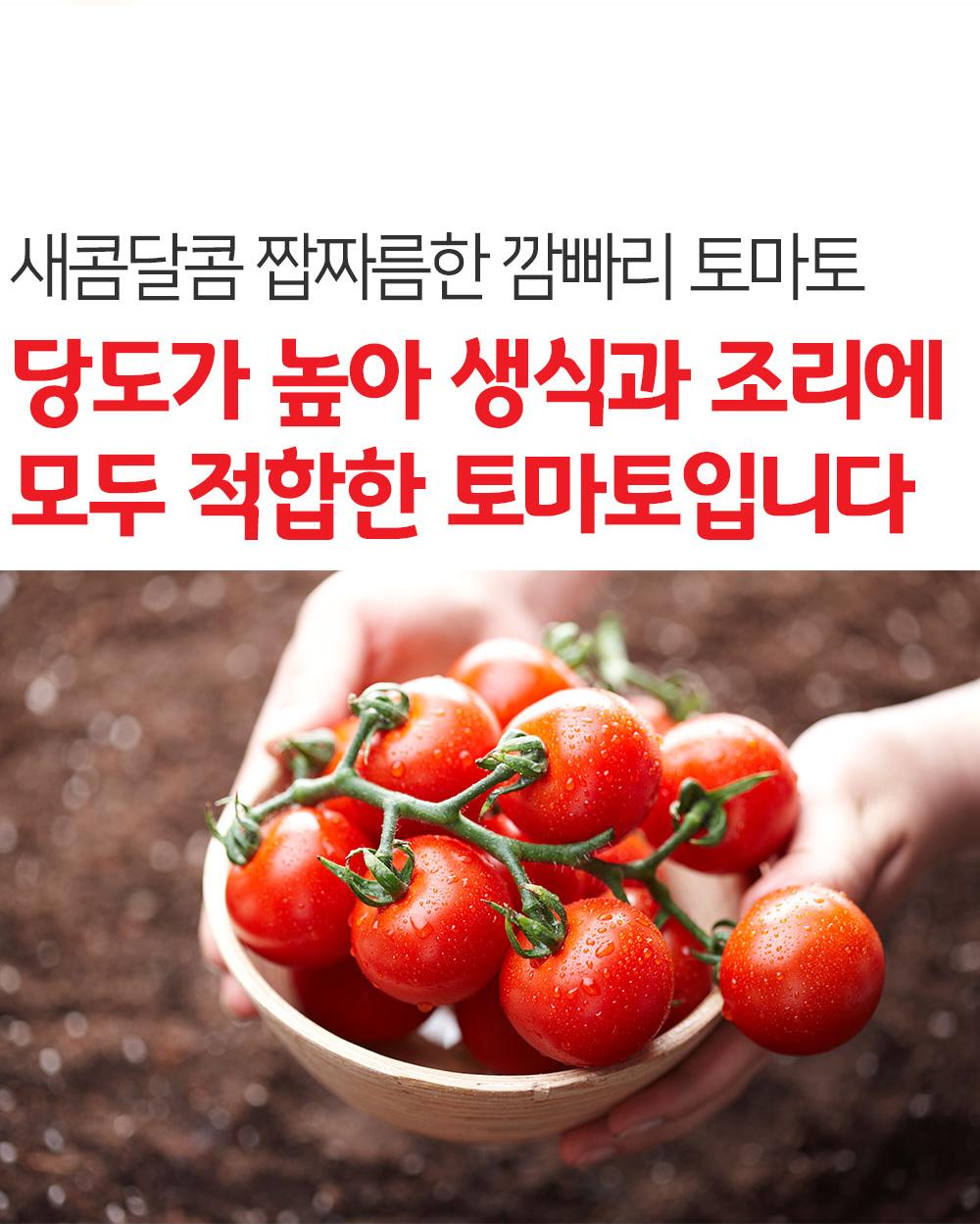 강원도-화천-깜빠리-토마토_상세페이지_02.jpg