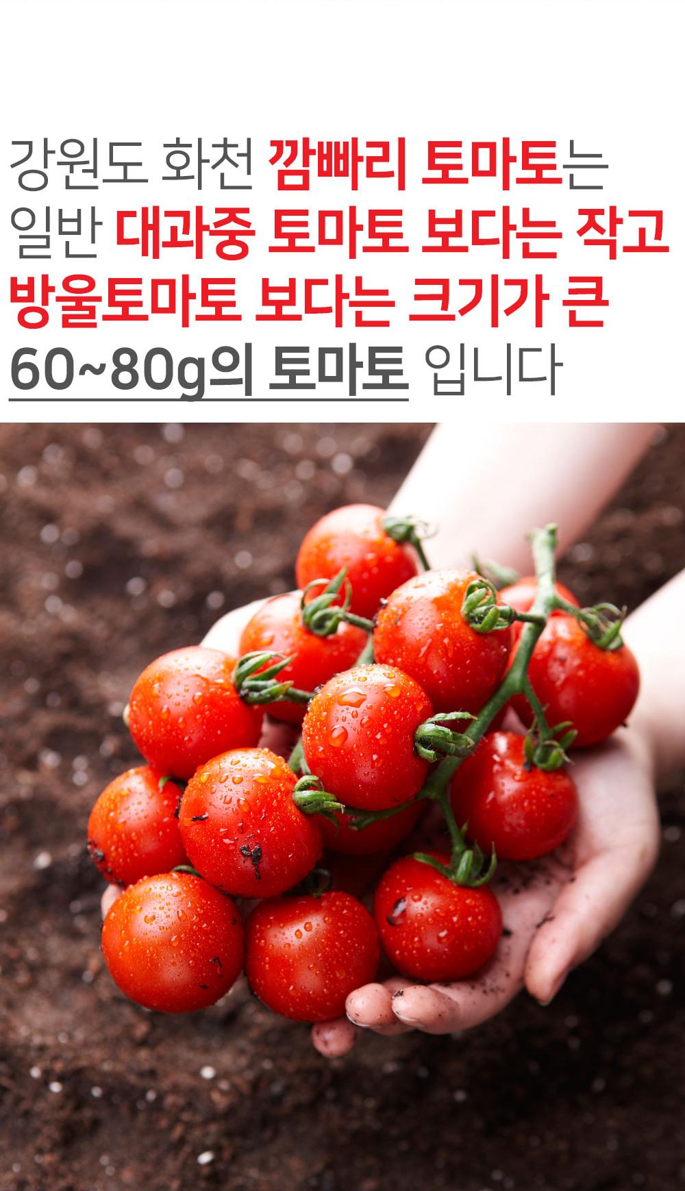 강원도-화천-깜빠리-토마토_상세페이지_04.jpg