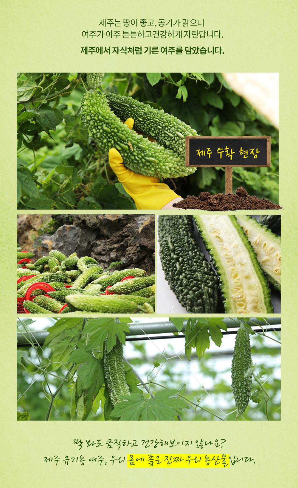 [제주네이쳐]-제주-맛있는-유기농-여주즙_상세페이지_03.jpg
